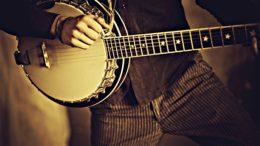 banjo avis